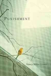 PunishmentCov-200x300